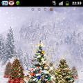 2011聖誕節活動