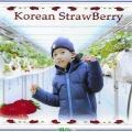 韓國之旅2020
