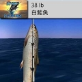 Big Sport Fishing 3D釣大魚
