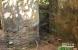 阿根廷森林驚現納粹秘密藏身所
