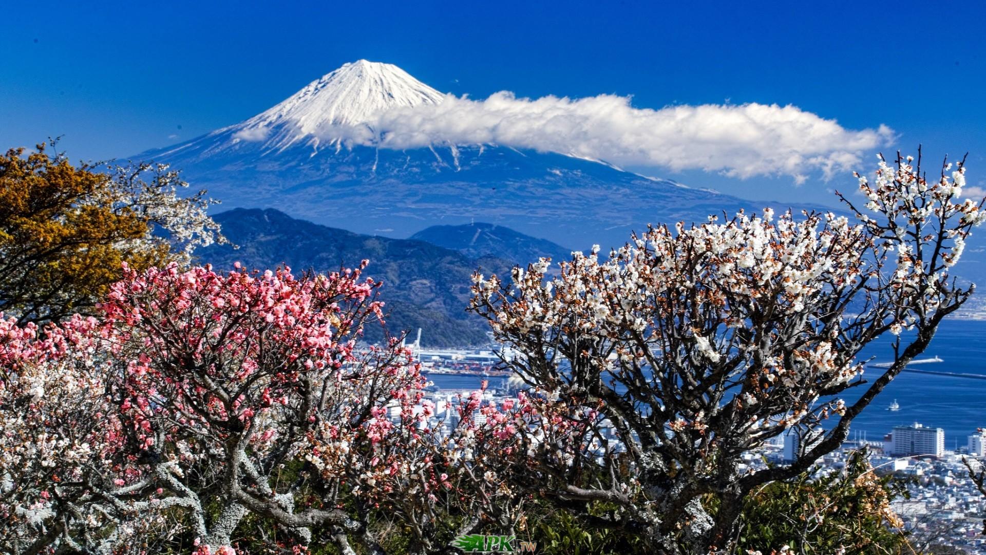 Mount Fuji - 5.jpg