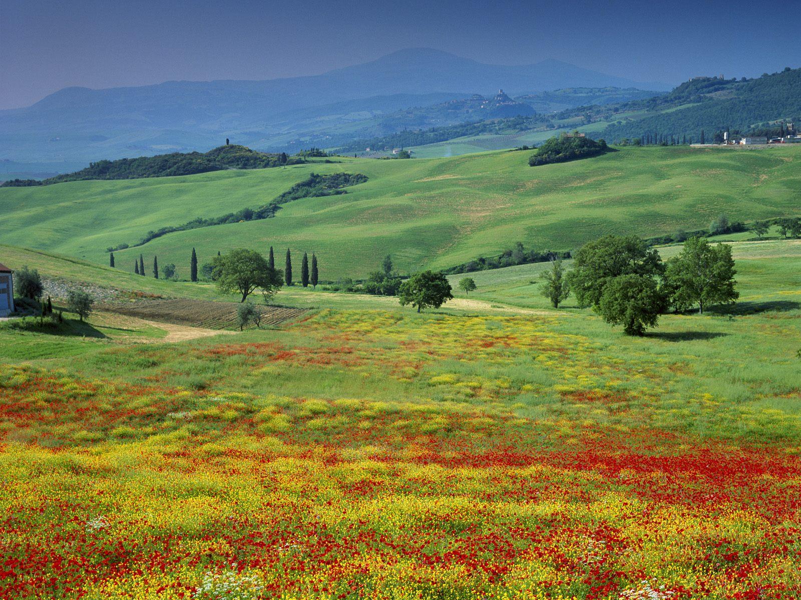 San Quirico Tuscany Italy.jpg