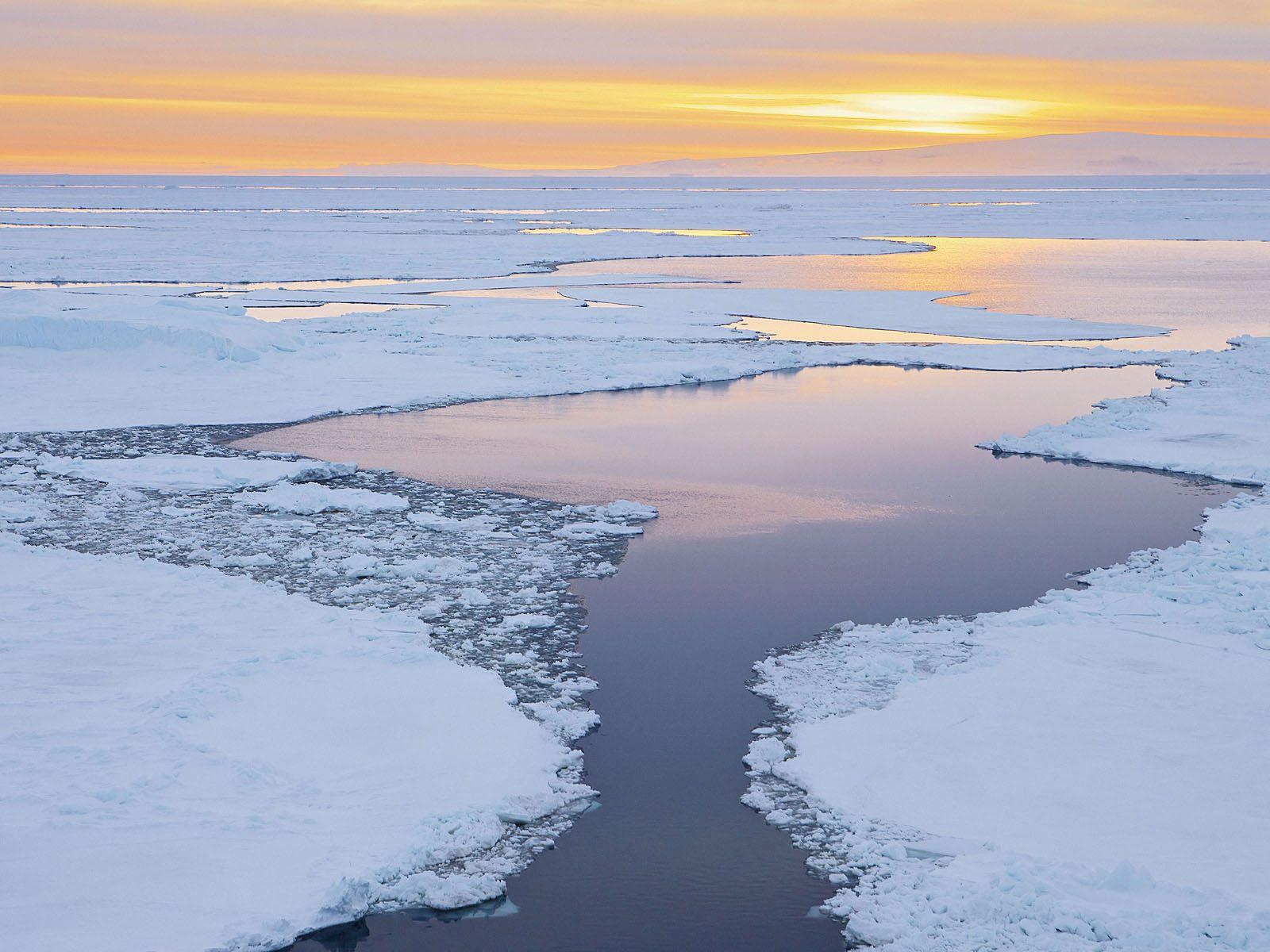 Icebergs at Dusk Antarctic Sound Antarctica.jpg