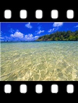 Turquoise Waters Hawaii.jpg