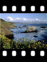 Rugged Oregon Coastline.jpg