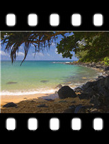 In the Shade Moloaa Kauai.jpg