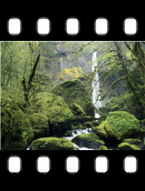 Elowah Falls Columbia River Gorge National Scenic Area Oregon.jpg