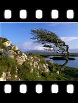 Connemara County Galway Ireland.jpg