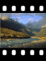 Copland River Above Welcome Flats Westland National Park New Zealand.jpg