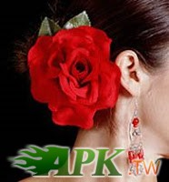 Flamenco rose in hair.jpg