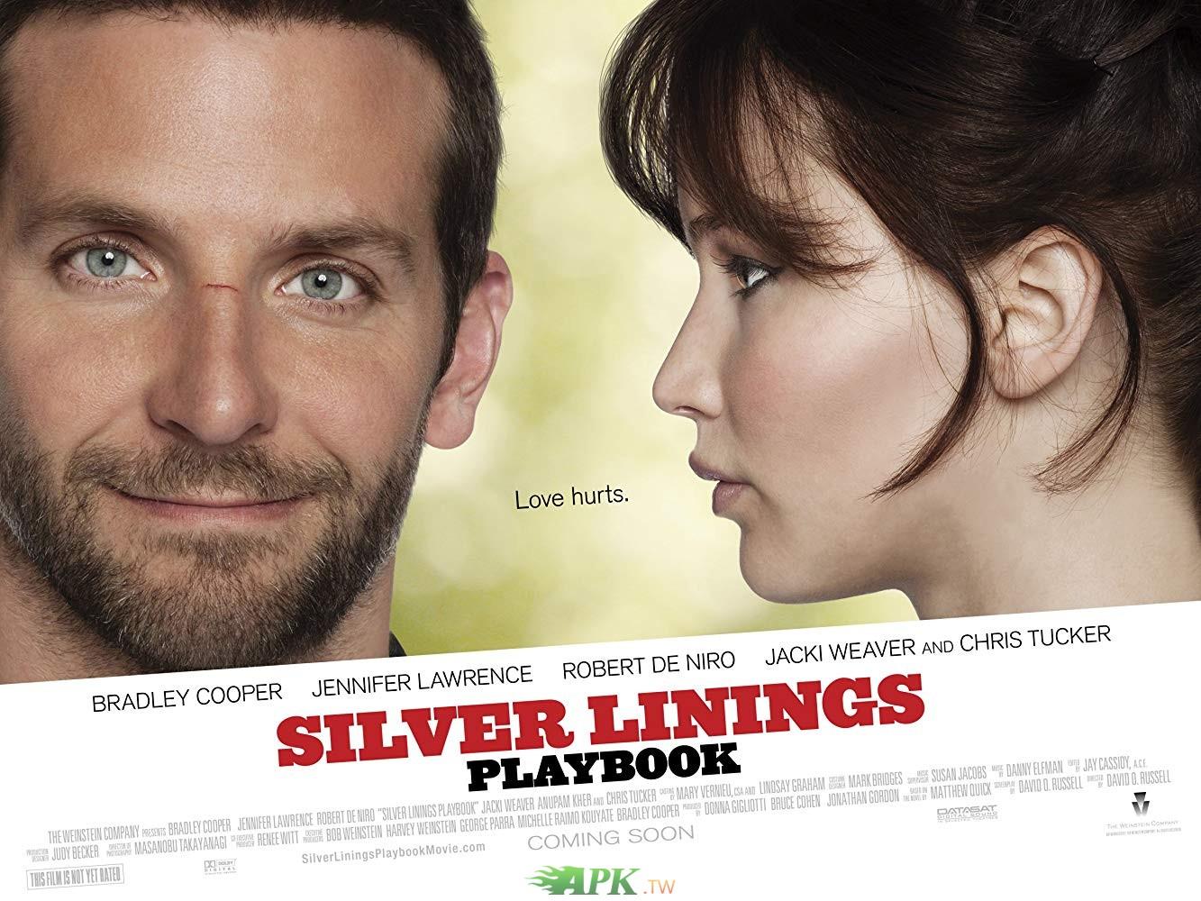 派特的幸福劇本 The Silver Linings Playbook 2012.jpg