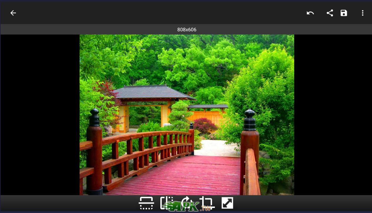 snap1237.jpg