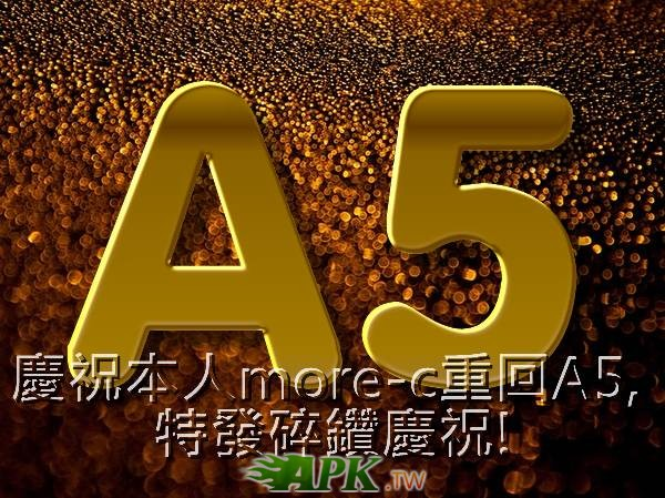 a5.jpg