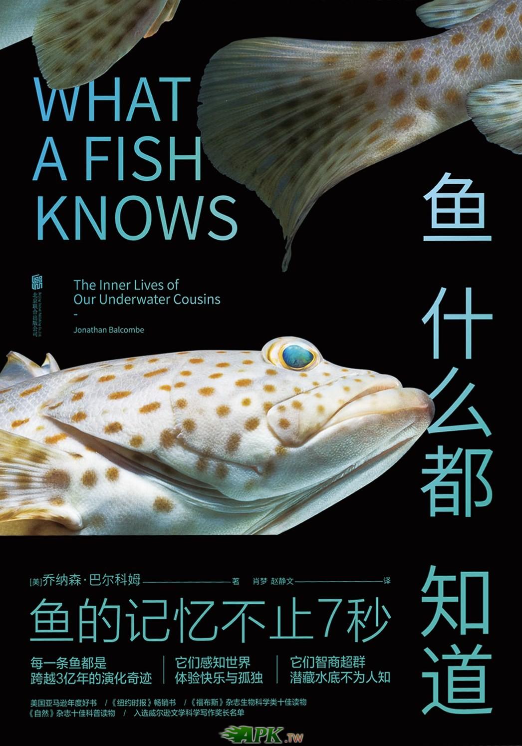 魚什麼都知道.jpg