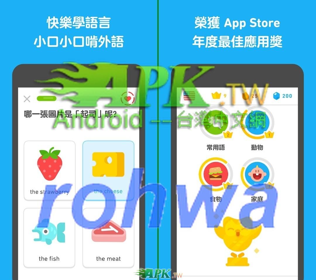 Duolingo__1_.jpg