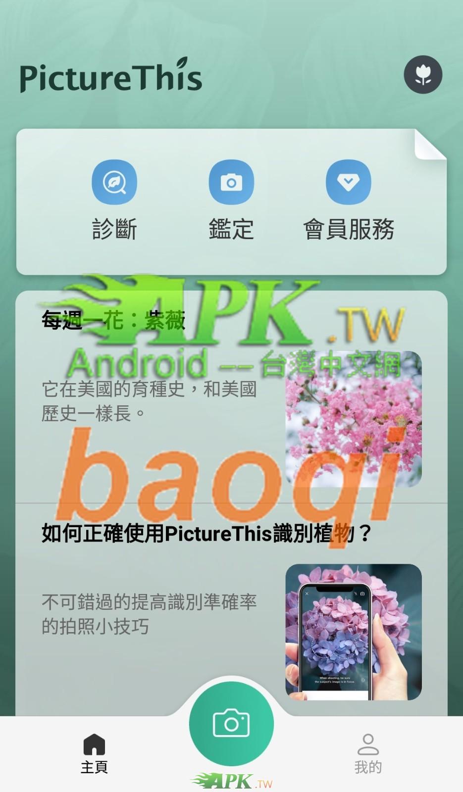 PictureThis__3_.jpg