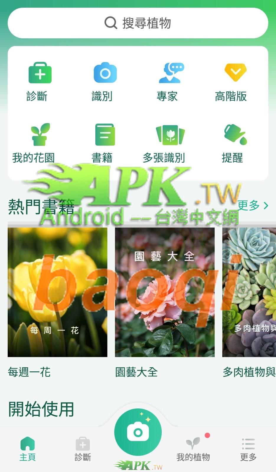 PictureThis__2_.jpg