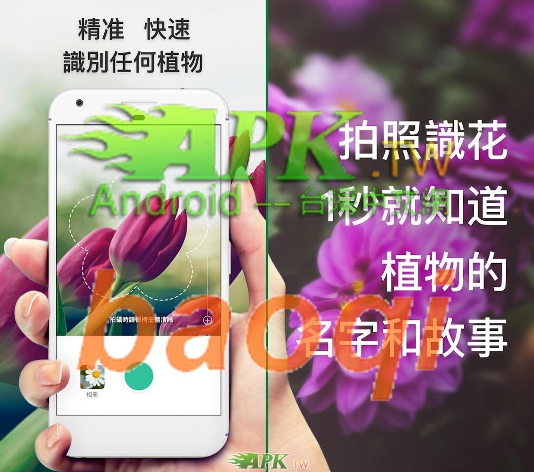 PictureThis__1_.jpg