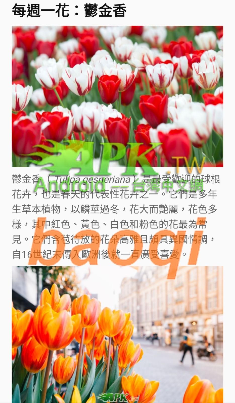 PictureThis__4_.jpg