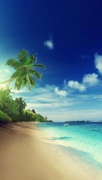 熱帶海灘動態桌布(2.3↑@3.7MB)