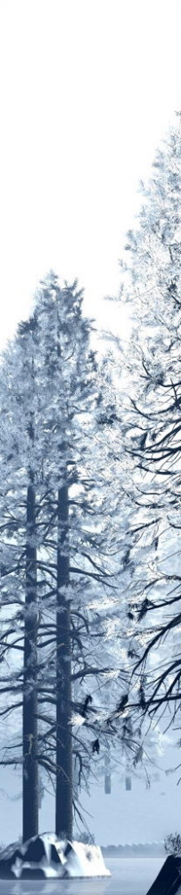 雪中的林木