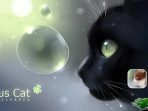 Curious Cat _v1.0.4 好奇的貓[已付費]