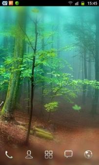 3D森林動態桌布