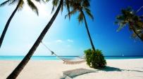 熱帶海灘桌布