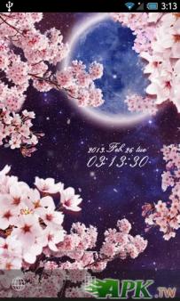 月桜 ライブ壁紙