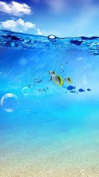海洋美景動態桌布(2.3↑@3.5MB)